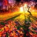 Виртуальная игровая программа «Осень — пора чудес!»